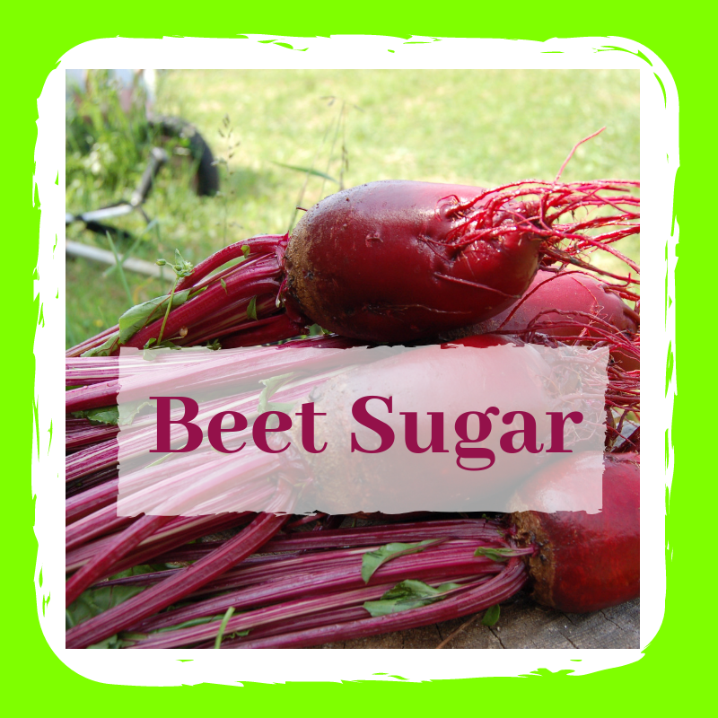 group of raw beets on green background